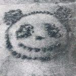【モーニング娘。'19】【またまたチクり】山?「パンダの落書きしてたらりおりおに消されました( ;∀;)」