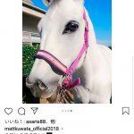 【芸能】桑田の息子Mattくん、馬にMatt加工を施しMattくんが生きるメルヘン世界の馬に変えてしまう!