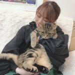 【モーニング娘。】石田亜佑美「小田の家のネコは飢えてて警戒心が強い。山木の家のネコは落ち着いてて人懐こい。」