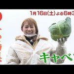 【桜井玲香(キャプテン)】桜井玲香さん、何故かバナナマン司会の生放送カラオケ番組に出演決定