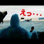 【VIP・なんj】日本で一番有能な水族館ってどこ?