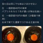 【期限】【朗報】AKBラーメン店主梅澤さん、無実だった「卵ひとつとっても産地の違いくらいわかります」