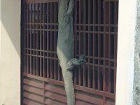 【動物・いきもの】【玄関にオオトカゲ】マレーシアの仰天写真を貼ったツイートに続々と驚きの画像リプが!��